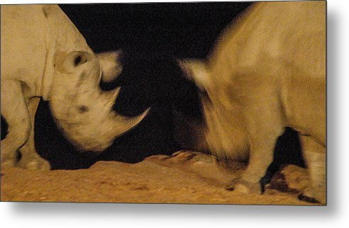 Action Metal Print featuring the photograph Rhino Clash by Alistair Lyne