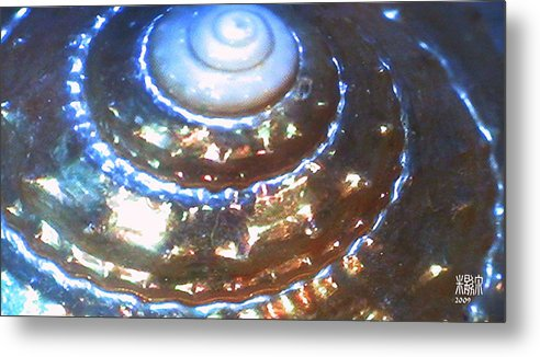 Microscopics Metal Print featuring the photograph Shell by Michele Caporaso