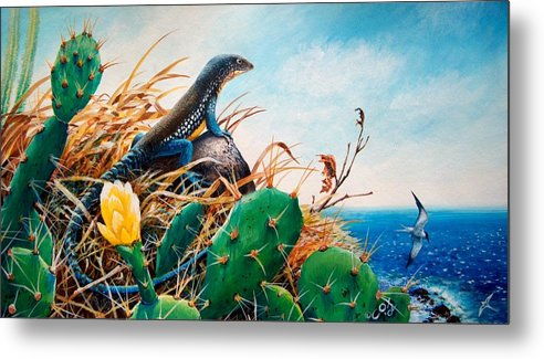 Chris Cox Metal Print featuring the painting St. Lucia Whiptail by Christopher Cox