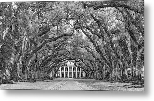 Oak Alley Plantation Metal Print featuring the photograph The Old South Version 3 Bw by Steve Harrington