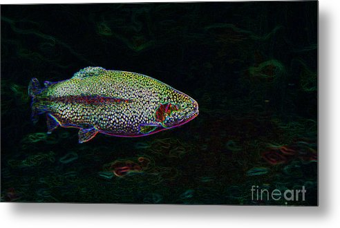 Swimming Metal Print featuring the photograph Rainbow Trout Swimming by Lane Erickson