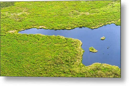 Horizontal Metal Print featuring the photograph The Pantanal Seen From The Sky Vii by Picture by Tambako the Jaguar