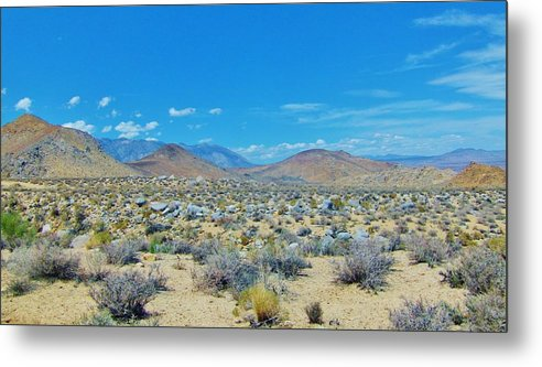 Sky Metal Print featuring the photograph Desert Comfort by Marilyn Diaz