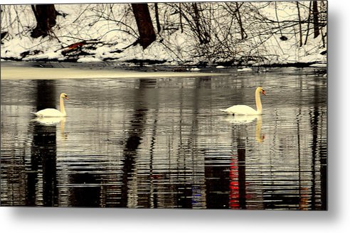 Lake View Metal Print featuring the digital art Swan Song by Aron Chervin