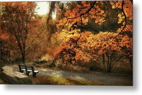 Autumn Metal Print featuring the photograph Autumn's Audience by Jessica Jenney
