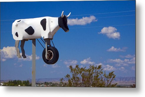 Cow Metal Print featuring the photograph Cow Power by Skip Hunt