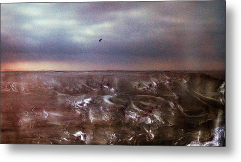 Paul Tokarski Metal Print featuring the photograph Lonely Flight by Paul Tokarski