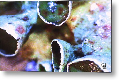 Microscopic Metal Print featuring the photograph River Plant by Michele Caporaso