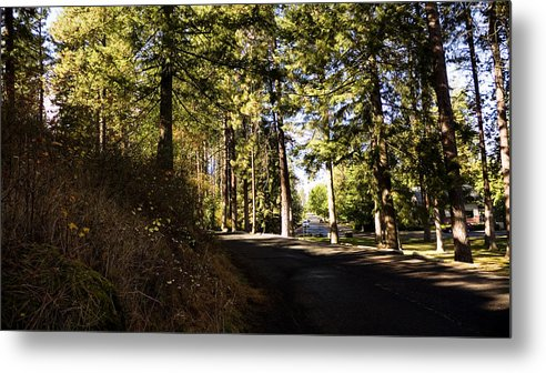 Spokane Metal Print featuring the photograph A Peaceful Walk by Duy Dang