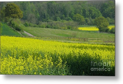 England Metal Print featuring the photograph English Countryside by Ann Horn