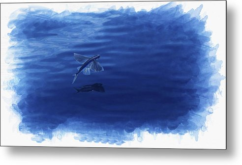 Bottlenose Dolphin Metal Print featuring the digital art Flying Fish by Don Kuing