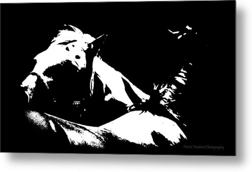 Animals Metal Print featuring the photograph Horses - Black And White by Travis Truelove