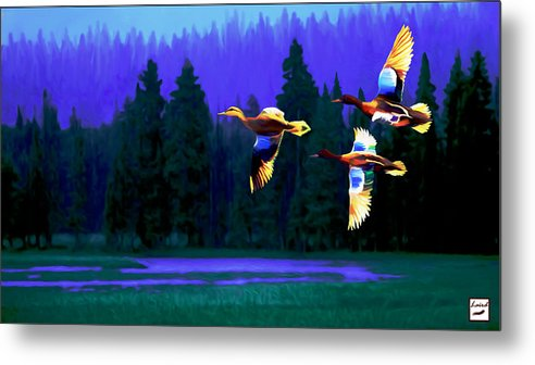 Wildlife Metal Print featuring the photograph Over Duck Lake by Laird Roberts