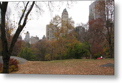 Landskape Metal Print featuring the photograph Relax In Central Park by Mihail Marcu