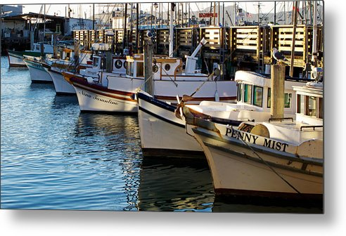 San Francisco Bay Metal Print featuring the photograph Resting By The Sea by Brian Orlovich