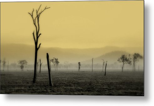 Landscape Metal Print featuring the photograph S P I R I T Land by Holly Kempe