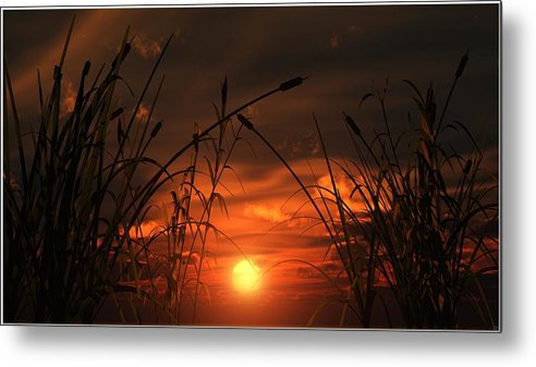 Sun Metal Print featuring the digital art Swamp Sunset by Tim Fillingim