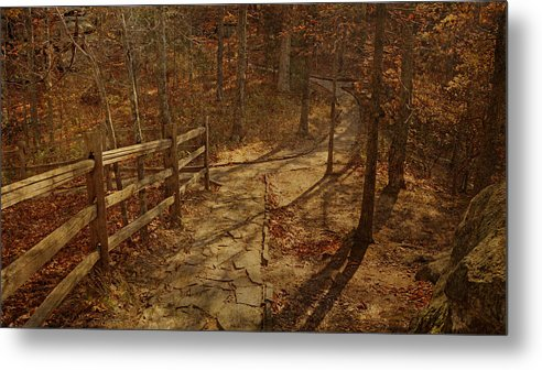Shawnee National Forest Metal Print featuring the photograph Walkway Through The Forest by Sandy Keeton