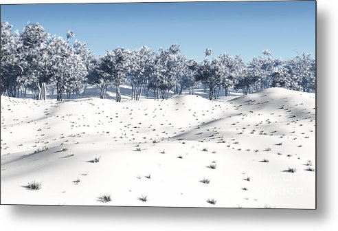 Winter Metal Print featuring the digital art Winter Coppice by Fairy Fantasies