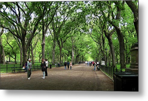 Central Park Metal Print featuring the photograph Central Park Arbor Walk Spring by Lorraine Devon Wilke