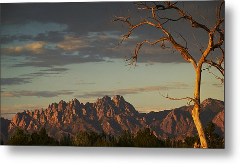 Sunset Metal Print featuring the photograph Organsunset by Mel Stone