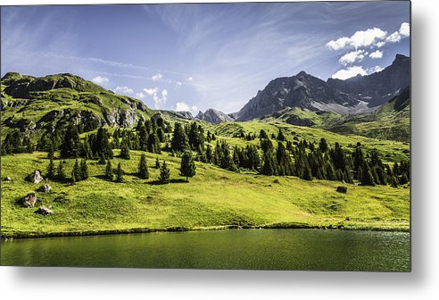 Horizontal Metal Print featuring the photograph Trees And Lake In Grassy Rural Landscape by Manuel Sulzer