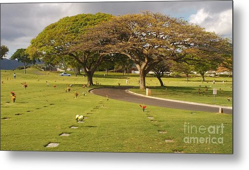 Nature Metal Print featuring the photograph Two Trees by Silvie Kendall