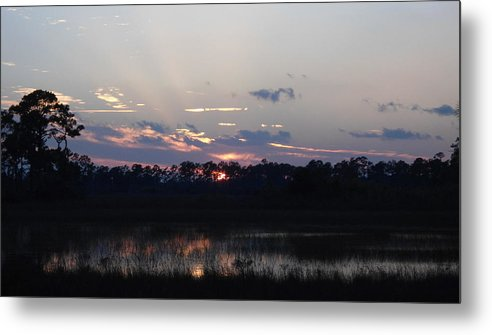 Wetlands Metal Print featuring the photograph Wetland Sunset by Stephanie Wagenbach
