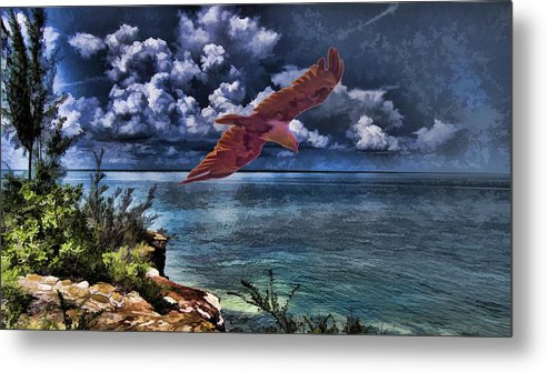 Brahminy Kite Metal Print featuring the photograph Wind Beneath My Wings by Douglas Barnard