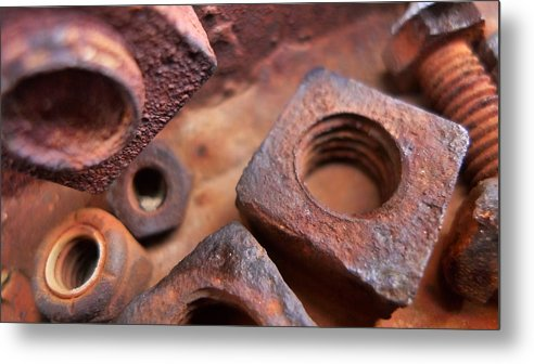 Skip Hunt Metal Print featuring the photograph Nutz by Skip Hunt