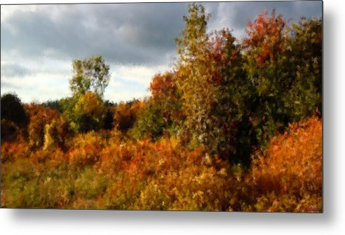 As The Clouds Broke Autumn Had Thrown A Bolt Of Fiery Calico Over The Treeline And Rose Brambles� Metal Print featuring the photograph Autumn Calico Along The Arroyo El Valle New Mexico by Anastasia Savage Ealy