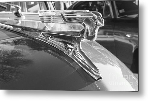 Classic Cars - 1941 Chevy Special Deluxe Business Coupe - Flying Lady Hood  Ornament Black And White Metal Print