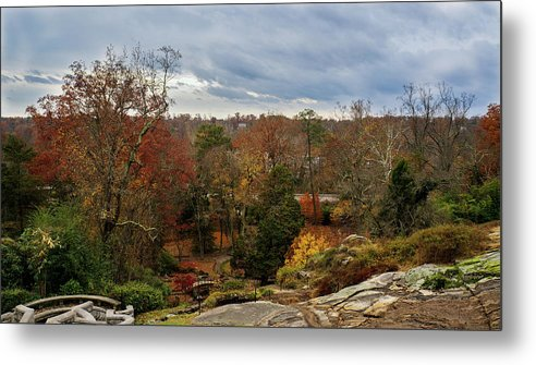 Fall Metal Print featuring the photograph Fall by Mecoes Florance