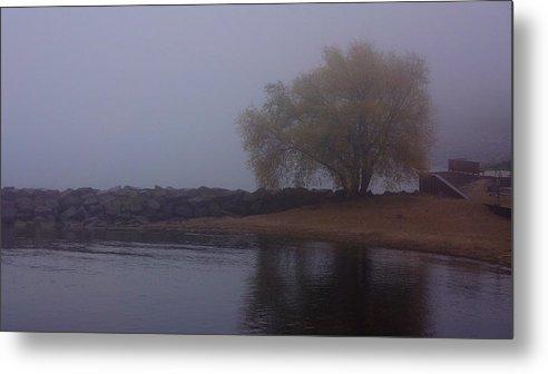 Fog Metal Print featuring the photograph Fog Lake Tree by Brooke Bowdren