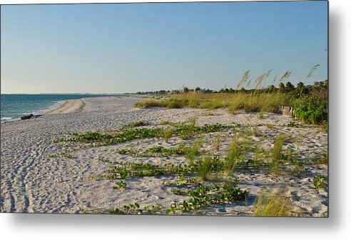 Gulf Of Mexico Metal Print featuring the photograph Gulf Of Mexico Beach by Steven Scott