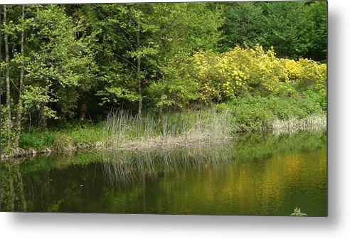 Spring Metal Print featuring the photograph In Peace With Nature by Attila Balazs