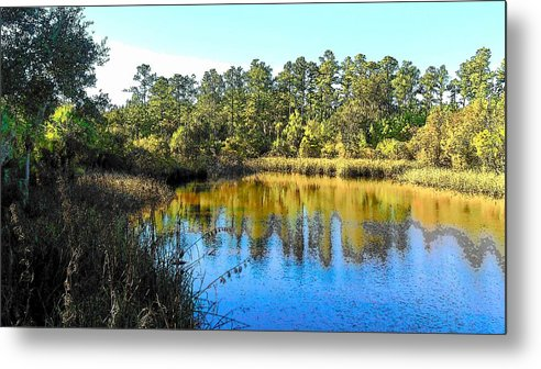 Marsh Metal Print featuring the photograph Lower Suwannee National Wildlife Refuge Ti by Sheri McLeroy