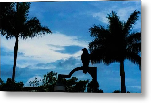 Susan Vineyard Metal Print featuring the photograph Nevermore In The Tropics by Susan Vineyard