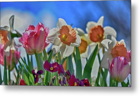 Ann Keisling Metal Print featuring the photograph Spring Blooms by Ann Keisling
