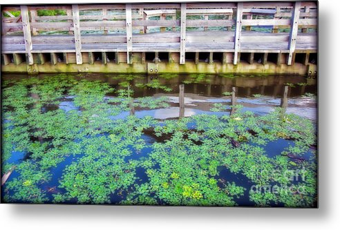 River Metal Print featuring the photograph View From The Pier by Madeline Ellis