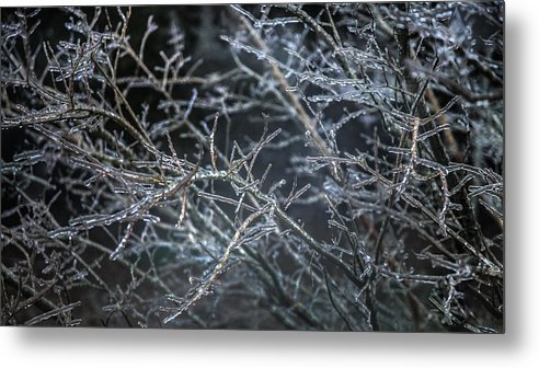 Icicles Metal Print featuring the photograph Whispers Of Winter by Karen Wiles