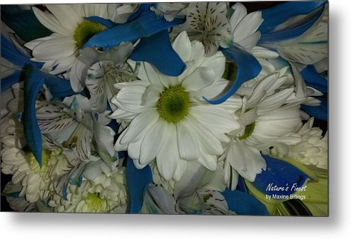 Flowers Metal Print featuring the photograph Yellow, White And Blue by Maxine Billings