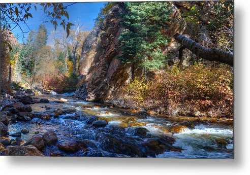 Trees Metal Print featuring the photograph Lower Cottonwood 2014 II by Tom Stonehocker