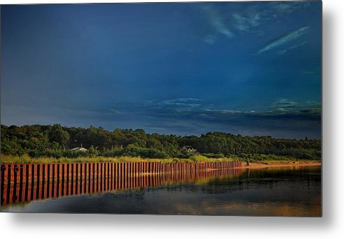 Water Metal Print featuring the photograph Wetland Barrier by Tony Ambrosio