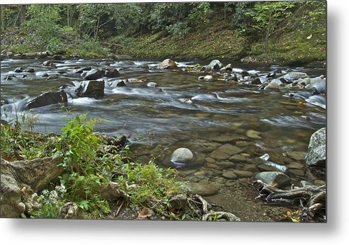 Autumn Metal Print featuring the photograph Tennessee Stream 6049 by Michael Peychich