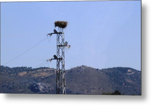 Seville Metal Print featuring the photograph Bird Nest On Spanish Highway Towards Seville by John Shiron