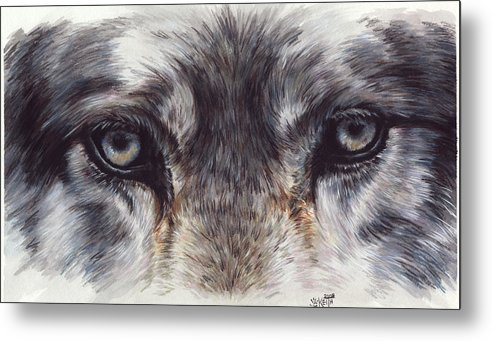 Wolf Metal Print featuring the painting Eye-catching Wolf by Barbara Keith