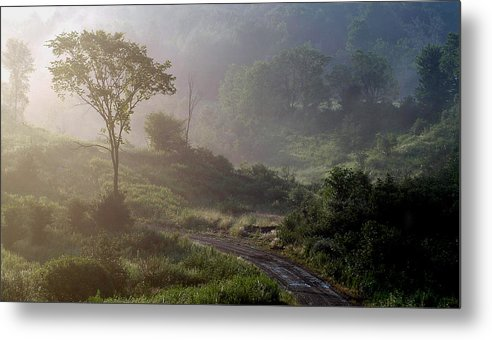 Landscape Metal Print featuring the photograph Nature by Robert Ruscansky
