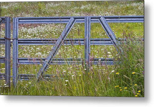 Gate Metal Print featuring the photograph The Gate II by Rebecca Cozart