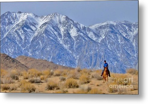 Horse Metal Print featuring the photograph Riding Solo by Marilyn Diaz